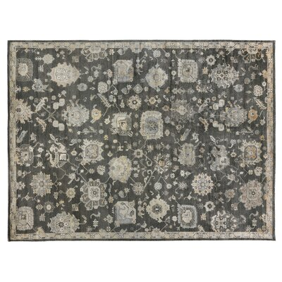 Museum Hand-Knotted Silk Midnight Blue Area Rug Rug Size: Rectangle 14 x 18