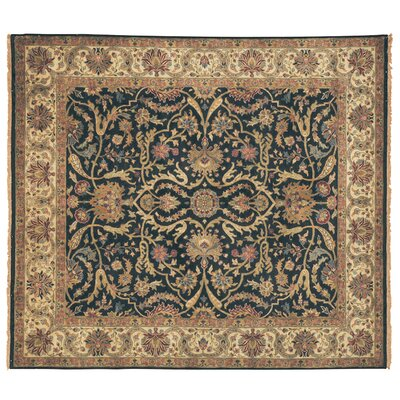 Polonaise Hand Knotted Wool Ivory/Brown Area Rug Rug Size: Rectangle 12 x 15