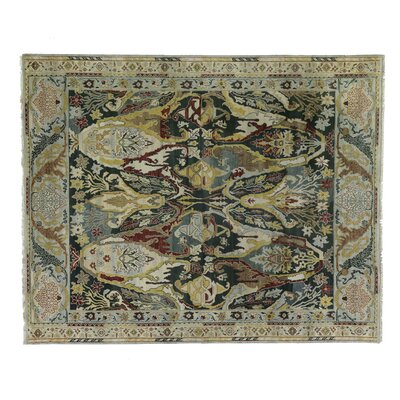 Jurassic Hand-Knotted Wool Black/Beige Area Rug Rug Size: Rectangle 12 x 15