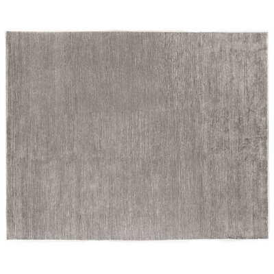 Crush Hand-Knotted Gray Area Rug Rug Size: Rectangle 6 x 9