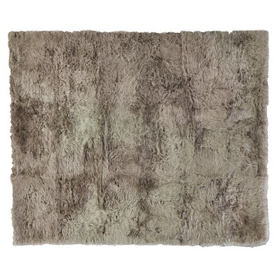 Hand woven Sheepskin Brown Area Rug Rug Size: Rectangle 8 x 11