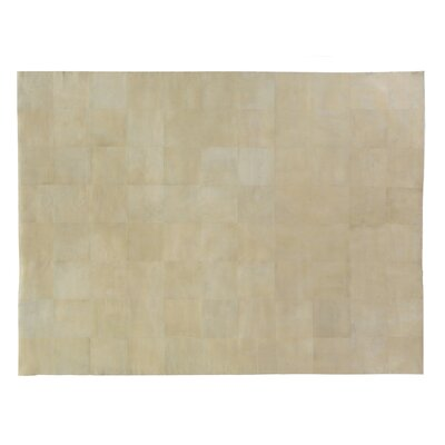 Hand woven Ivory Area Rug Rug Size: Rectangle 5 x 8