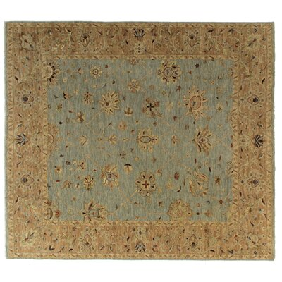Ziegler Hand-Knotted Wool Blue/Chocolate Area Rug Rug Size: Rectangle 8 x 10