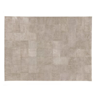 Beige Area Rug Rug Size: Rectangle 13'6
