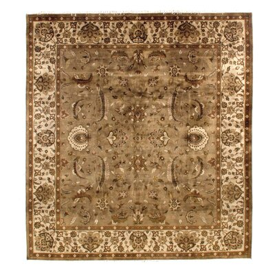 Hand-Knotted Brown/Beige Area Rug Rug Size: Rectangle 9 x 10