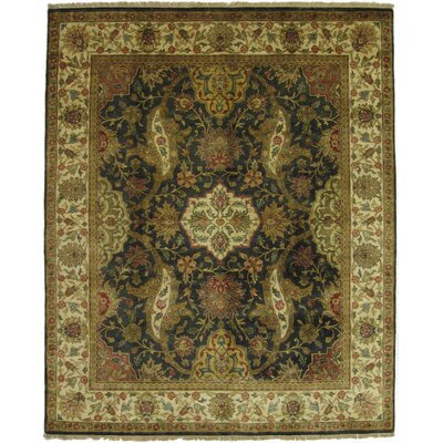 European Polonaise Hand-Knotted Wool Black/Ivory Area Rug Rug Size: Rectangle 9 x 10