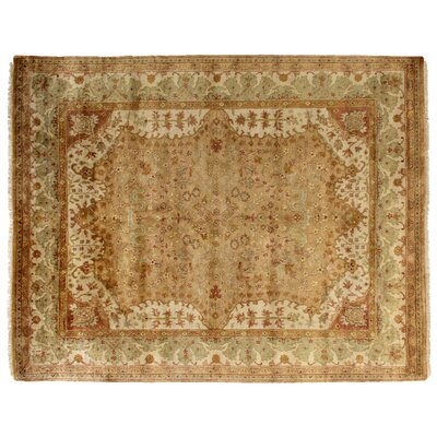 Anatolian Oushak Hand-Knotted Wool Gold Area Rug Rug Size: Rectangle 8 x 10
