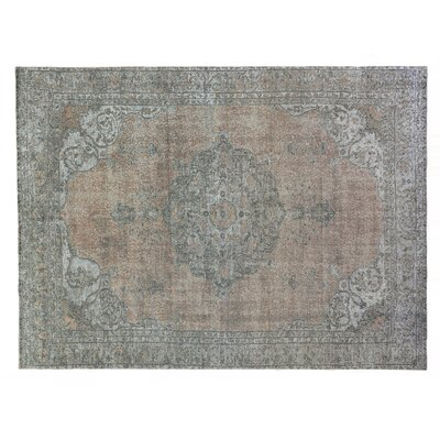 Zita Gray/Beige Area Rug Rug Size: Rectangle�8 x 10