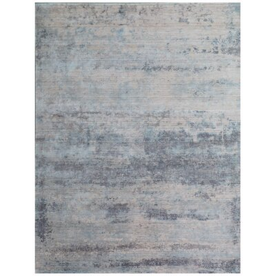 Roset Silver Area Rug Rug Size: Rectangle 9 x 12
