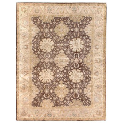 Hand Woven Wool Brown/Beige Area Rug Rug Size: Rectangle 6 x 9