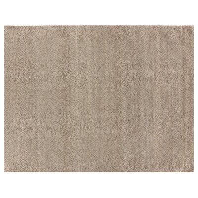 Hand-Woven Wool Beige Area Rug Rug Size: Rectangle 14 x 18
