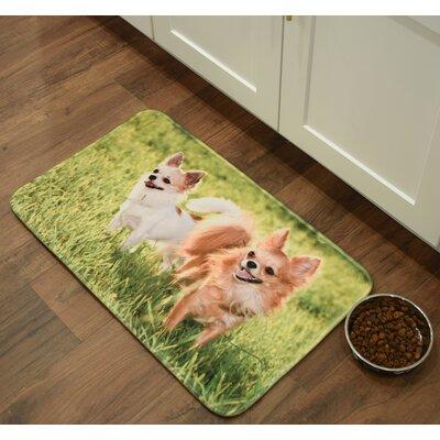 Barkley Chihuahuas Kitchen Mat Mat Size: 26 x 36