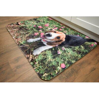Barkley Beagle Kitchen Mat Mat Size: 26 x 36