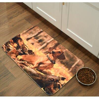 Barkley Dachsund Kitchen Mat Mat Size: 26 x 36