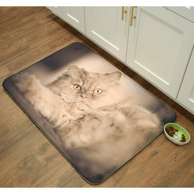 Whimsical Whiskers Persian Kitchen Mat Mat Size: 16 x 26
