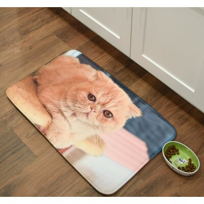 Whimsical Whiskers Exotic Shorthair Kitchen Mat Mat Size: 26 x 36
