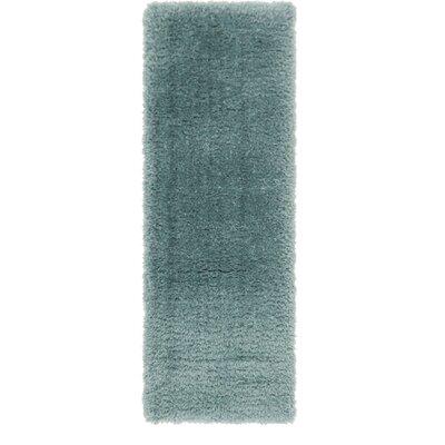 Blue Area Rug Rug Size: Runner 2 x 6