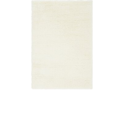 White Area Rug Rug Size: 4 x 6
