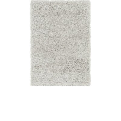 Silver Area Rug Rug Size: 4 x 6