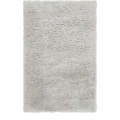 Silver Area Rug Rug Size: 5 x 8