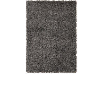 Slate Area Rug Rug Size: 4 x 6