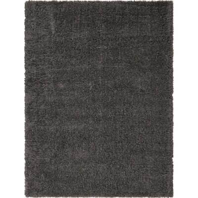 Slate Area Rug Rug Size: 9 x 12