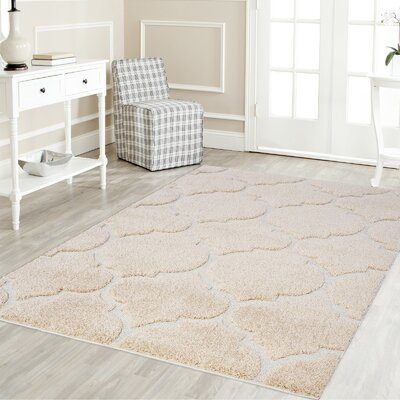 Ruiz Shag Beige/White Area Rug Rug Size: Rectangle 4 x 6