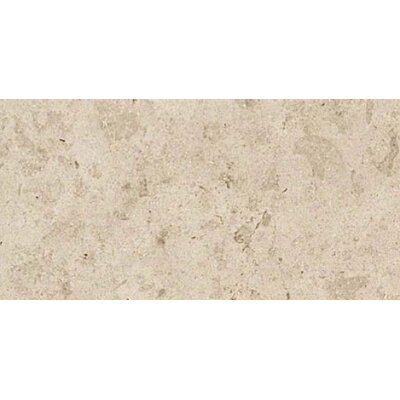 Everstone 12 x 24 Porcelain Field Tile in Ever-Beige
