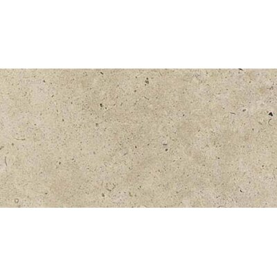 Everstone 12 x 24 Porcelain Field Tile in Ever-Claire