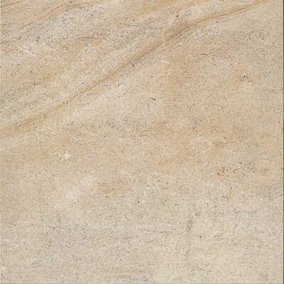 Everstone 12 x 12 Porcelain Field Tile in Ever-Dore