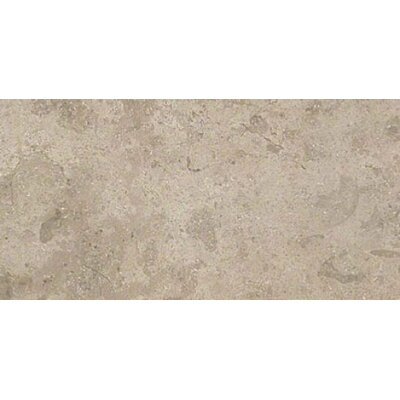Everstone 12 x 24 Porcelain Field Tile in Ever-Grau