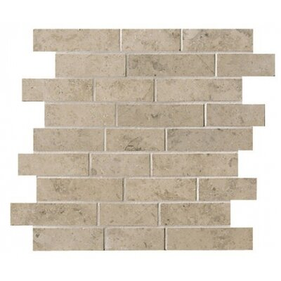 Everstone 2 x 4 Porcelain Mosaic Tile in Ever-Grau