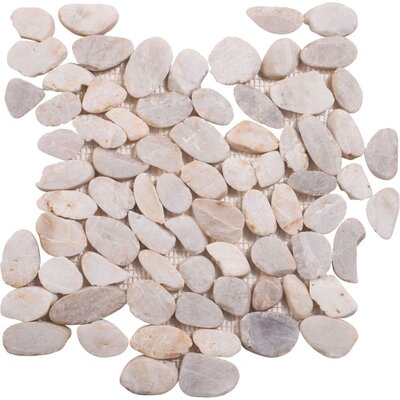 Mesh Mounted Random Sized Natural Stone Pebble Tile in Sand/White