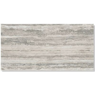 Sant Agostino Tipos 12 x 24 Porcelain Field Tile in Silver