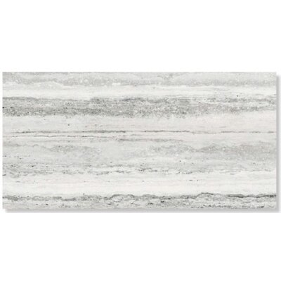 Sant Agostino Tipos 12 x 24 Porcelain Field Tile in White