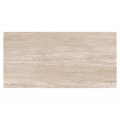 Travel 12 x 48 Porcelain Wood Look Tile in North White