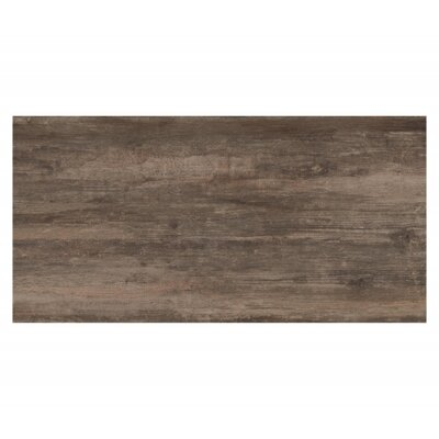 Travel 12 x 48 Porcelain Wood Look Tile in West Brown