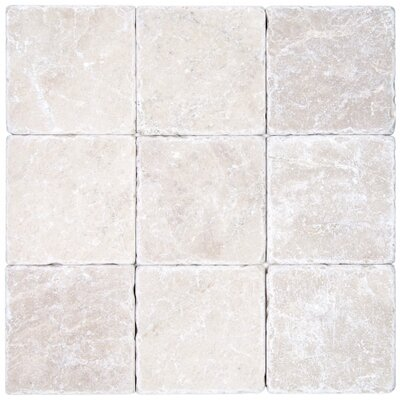 Valorem Tumbled 4 x 4 Marble Field Tile in Botticino
