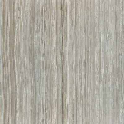Wave Rock Tipos 12 x 24 Porcelain Field Tile in Cloud