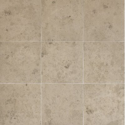 Everstone 12 x 12 Porcelain Field Tile in Ever-Grau