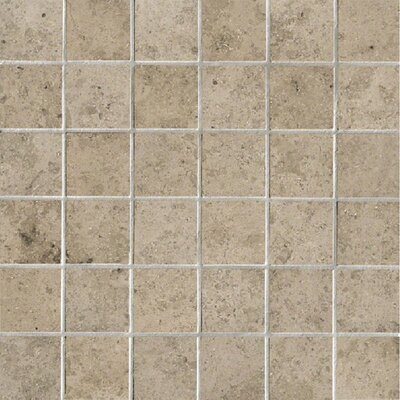 Everstone 2 x 2 Porcelain Mosaic Tile in Ever-Grau