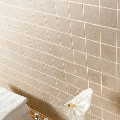 Everstone 2 x 2 Porcelain Mosaic Tile in Ever-Claire