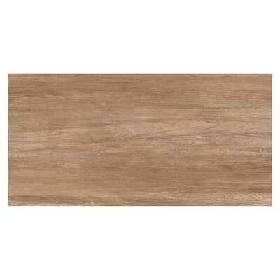 Travel 12 x 48 Porcelain Wood Look Tile in South Gold
