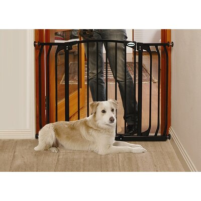 Hallway Pet Gate in Black