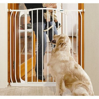 White Extra-Tall Hallway Pet Gate in White
