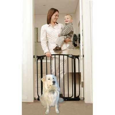 Black Swing Closed Pet Gate
