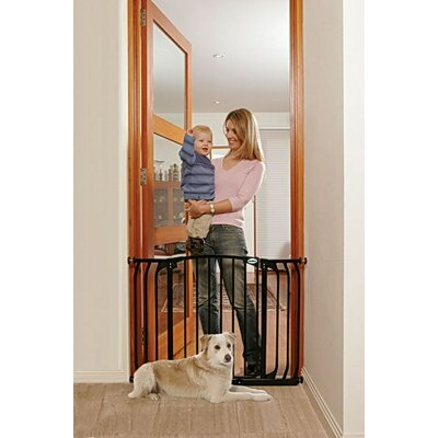 Hallway Pet Gate Finish: Black