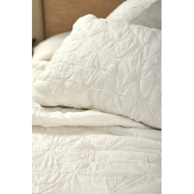Asher Quilt Set Size: Twin