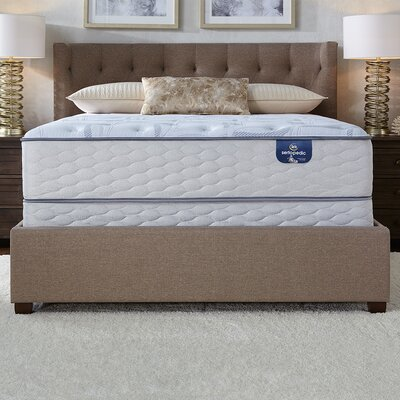 Castaway Plush Adjustable Base Gel Foam Mattress Size: King