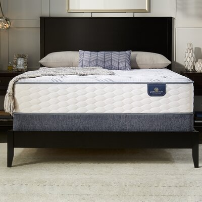Canbeck Plush Adjustable Base Innerspring Mattress Size: King